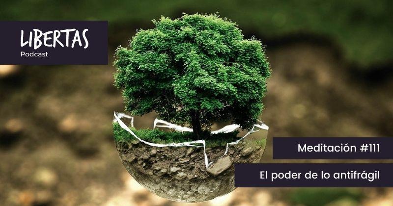 El poder de lo antifrágil (#111) - agustinblanco.com