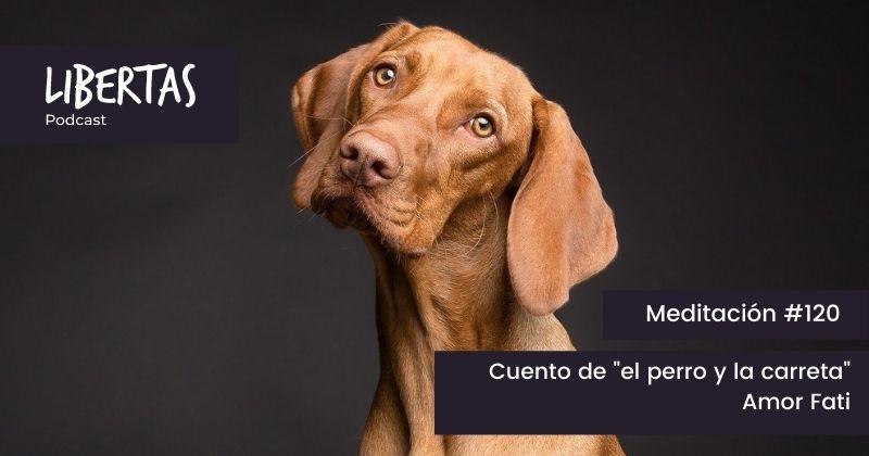 """Cuento de """"el perro y la carreta"""". Amor Fati (#120) - agustinblanco.com"""