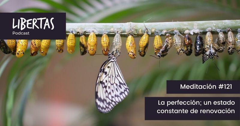 La perfección; un estado constante de renovación (#121) - agustinblanco.com