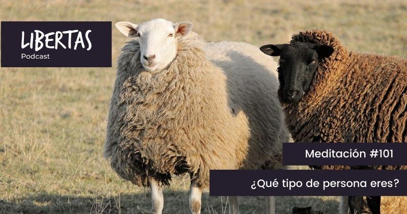 ¿Qué tipo de persona eres? (#101) - agustinblanco.com