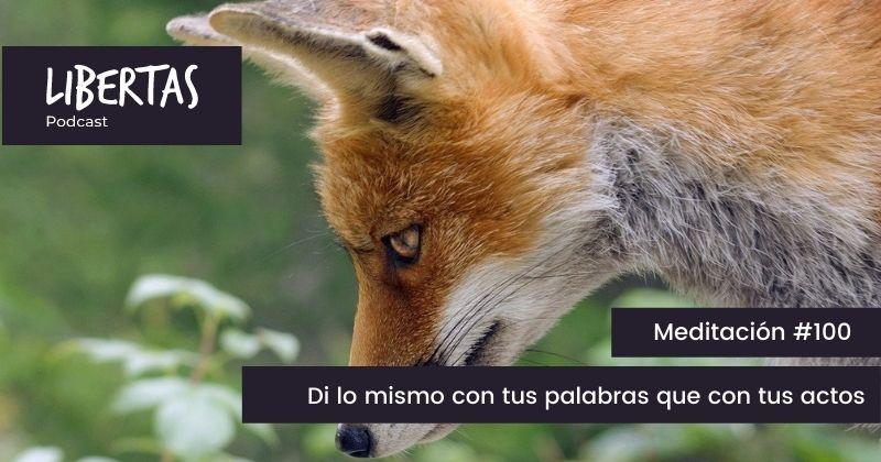 Di lo mismo con tus palabras que con tus actos. (#100) - agustinblanco.com